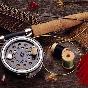 Охотничьи и рыболовные магазины Пестяков