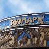 Зоопарки в Пестяках